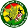 Sativa Grow Shop